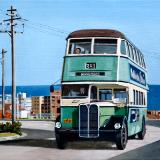The 381 Bus to Dover Heights
