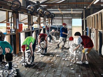 Shearing at Griffdale